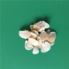 /product-detail/air-dried-natural-white-flakes-garlic-dehydrated-60808716291.html