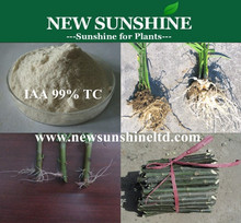 Indole Acetic Acid Plant Rooting Agent IAA