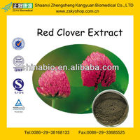 GMP Manufacturer Supply Natural Red Clover Extract