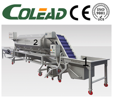 Hot sales Continuous vegetable washing machine root vegetable processing line from Colead