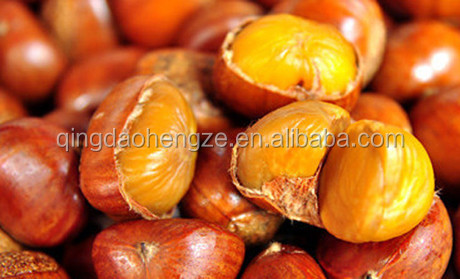 Best Price China Chestnuts/producted Chestnuts without shell for sale
