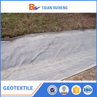 geotextile bentonite clay liner 400g/m2,pp polyester geotextile