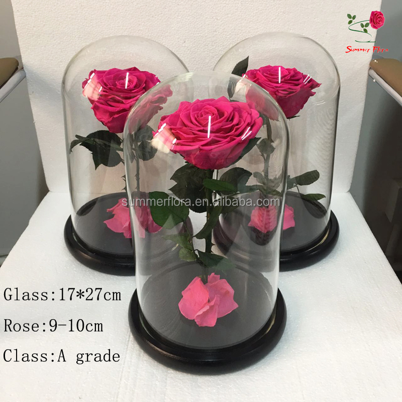 Top sell real long lasting eternal preserved flowers rose in glass, 17*21cm flower glass dome