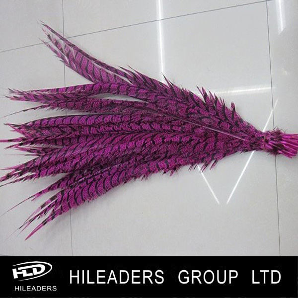 LO289 Decorative Golden Pheasant Feather Carnival Feathers