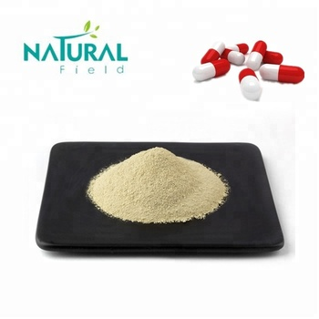 13 Years Factory Supply 98% Luteolin Powder