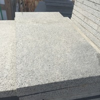 Xiamen flamed basalt bluestone pavers