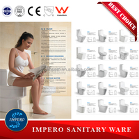 Ceramic washdown or siphonic sanitary ware toilet