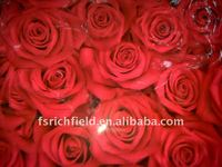 pvc table cloth transparent with rose design