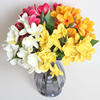Real touch flowers Plumeria artificial flower