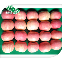 Best Price Yantai Fresh Red Fuji