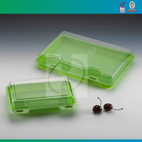 Take Away Plastic Lunch Box