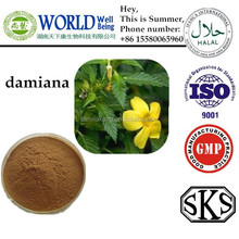 Damiana leaf p.e/Damiana Leaf Extract Powder Sex men sex pills for men
