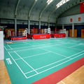 High Wear Resistance Badminton Court Mat