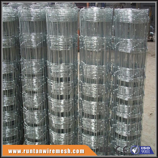 China manufacturer wildlife fencing galvanized sheep goat wire mesh roll fence