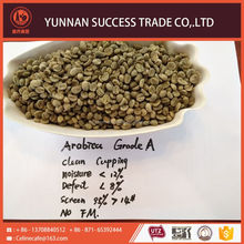 Wholesale cheap hot selling arabica coffee bean with best price