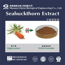 Free Samples Natural Seabuckthorn Fruit Extract Powder