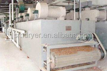 DW mesh-belt fruit drying machine