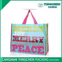 China printed PP Non woven bag with competitive price