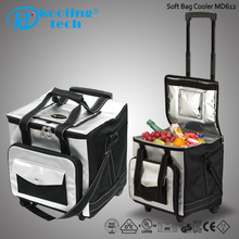 Motor small Fridge active leisure travel thermal lined flat folding Cooler bags