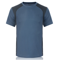 Promotional 100% Polyester T Shirt Mens Plain Quick Dry Mesh Sports T Shirt
