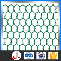 Lowes Hexagonal Chicken Wire Mesh Manufacturers