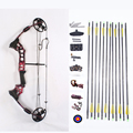 M120 compound bow and arrow set Best Price hunting archery and arrows