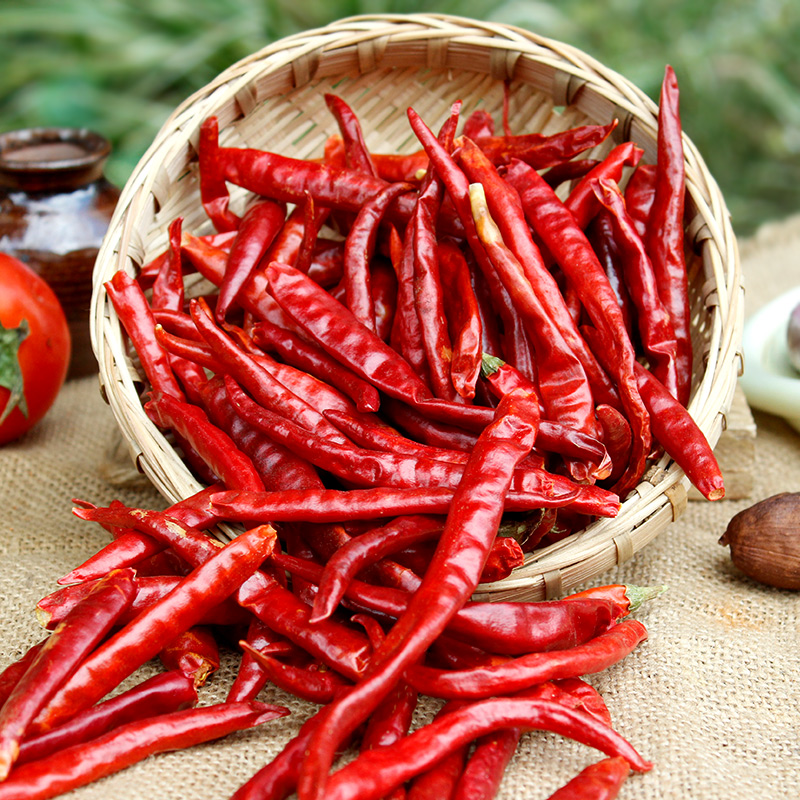 Factory sale whole chili of ISO9001 Standard