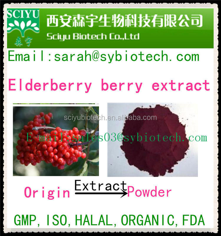 100% Natural product Elderberry Extract Powder