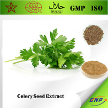 Natural Vegetarian 100% Natural Celery Seed Extract with Phytochemicals and Volatile Oils