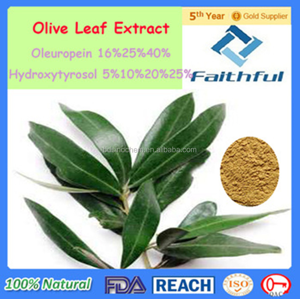 natural supplement/Water Soluble Olive Leaf Extract/Hydroxytyrosol/Oleuropein