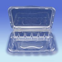 Retangular Fruit Container with hinged lids