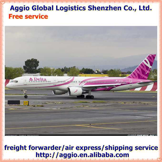 shenzheng aggio logistics for china canned food forwarder