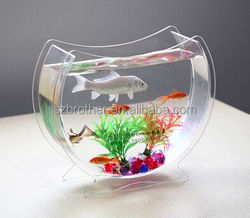 Hot selling clear acrylic wall hanging dome fish tank for home decoration