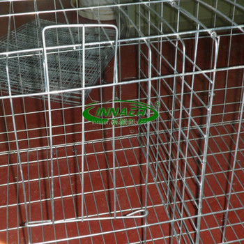 high quality chicken coop hen house supplier (20 years factory ISO9001)