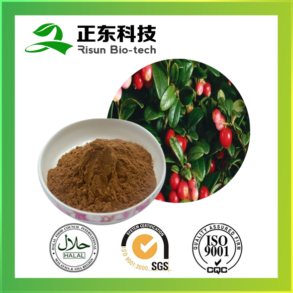 Risun naturals extract powder 17% Vitamin C Rose Hip Extract