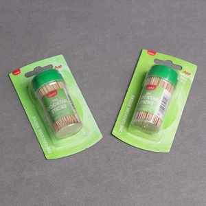 New products dental floss toothpick with auto holder