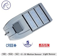 Strong IK10 waterproof IP65 high bright 110lm/w project quality with meanwell driver street led light