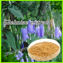 Natural radix glehniae extract powder/coastal glehnia root extract