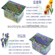 Happy farm-Potmarigold and Myosotis sylvatica