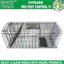 Haierc factory directly Folding Live rat cage trap,rat trap cage,metal wire wild animal trap cages