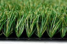 FIFA1 Certificate Artificial Turf for Football TMHL50