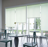 Specialize In Produce Spring Roller Blind Parts