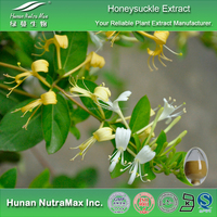 Top Quality Flos Lonicerae Flower Extract,Flos Lonicerae Flower P.E.5:1 10:1