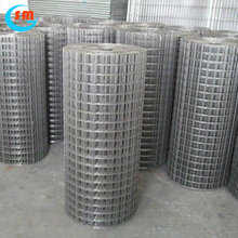 Promotional Top Quality 0.5--6MM 2*2 Galvanized Welded Wire Mesh For Fence Panel