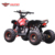 110cc Petrol Powered Motor Chain Drive Kids Mini ATV