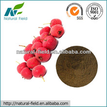 China manufacturer hawthorn berry extract