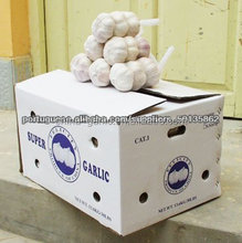 High Quality Wholesale Price Fresh Natural Garlic