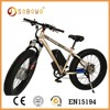 electric bicycle city e cycle e bike/e road electric bike