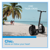 IO Chic Cross 2000w High Power Self-balancing Electric Motorcycle Adult Powerful