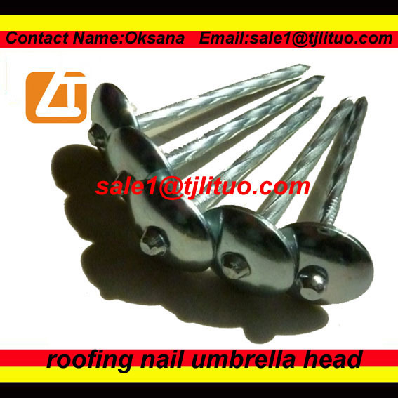 High quality roofing nails roofing coil nail for hitachi nv45 series